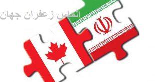 صادرات زعفران به کانادا - الماس زعفران جهان