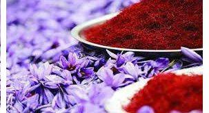 خرید و فروش زعفران در بورس