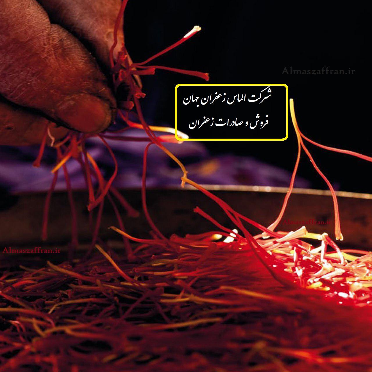 روش صادرات زعفران چگونه است؟