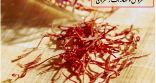 method-of-exporting-saffron-to-indonesia