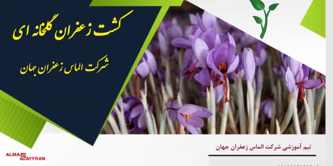 تجهیزات گلخانه زعفران