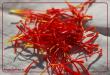 صادرات زعفران به دانمارک