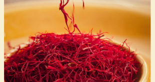 price-per-kilo-of-premium-saffron-export