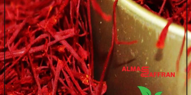rate-of-kilo-saffron-in-mashhad-market