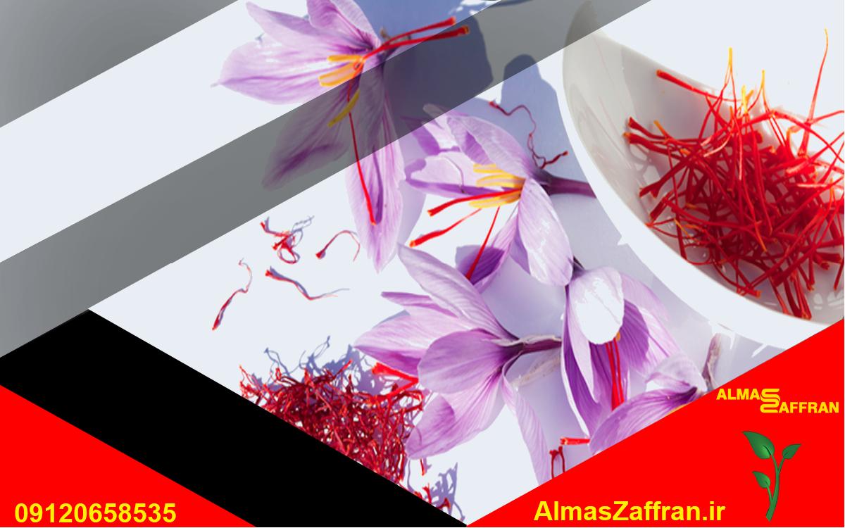 نمایندگی فروش زعفران در همدان