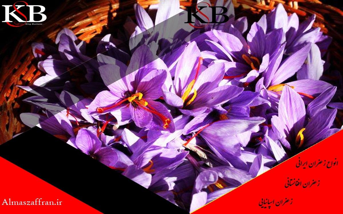 قیمت زعفران در اندونزی
