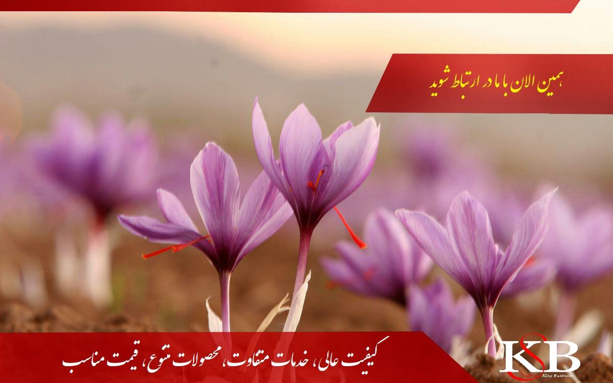 بازار زعفران مشهد
